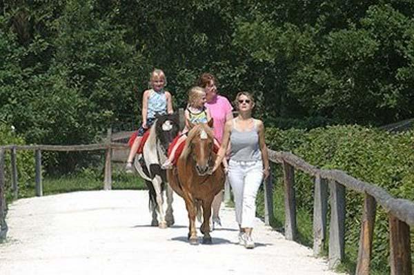 Lochmühle Ponyreiten
