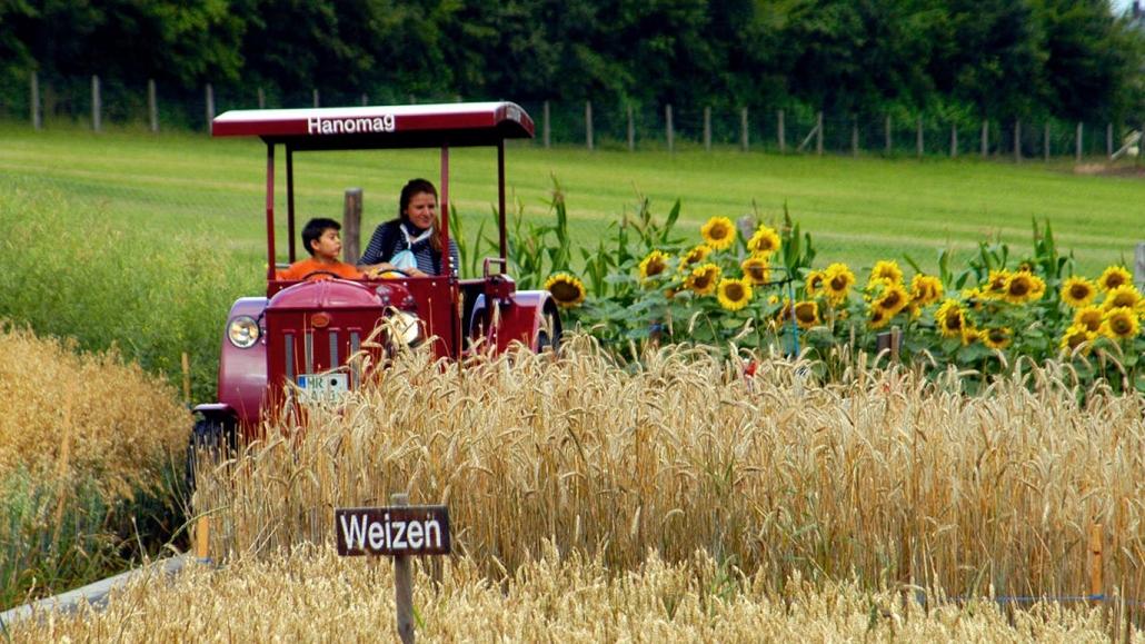 Lochmühle Traktor
